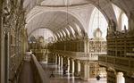 La somptueuse bibliothèque du palais de Mafra, à découvrir et visiter